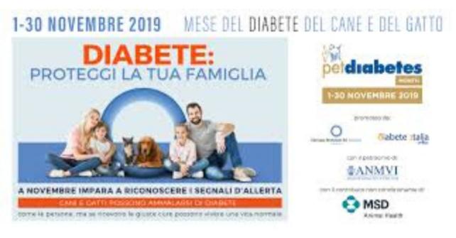 Novembre: mese per la prevenzione del diabete nel cane e nel gatto